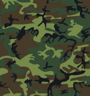 alnilam_camouflage_2